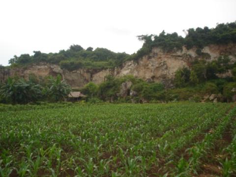 gua perawan desa sidomukti kecamatan brondong lamongan jawa timur