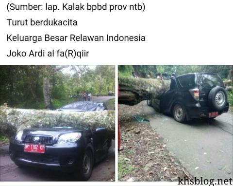 pohon besar menimpa mobil dinas camat sembalun lombok timur NTB hari jum'at tanggal 11 Maret 2016