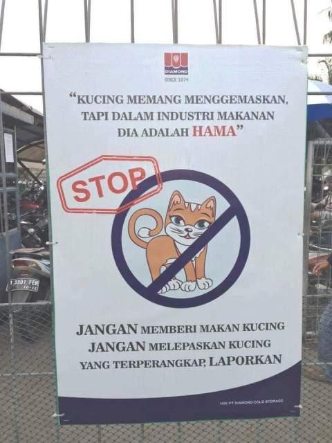 papan larangan kucing masuk pabrik PT Diamond atau Sukanda Jaya industri makanan