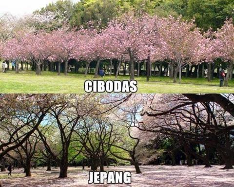 Foto suasana mirip antara di Indonesia dengan di Luar Negeri (3)