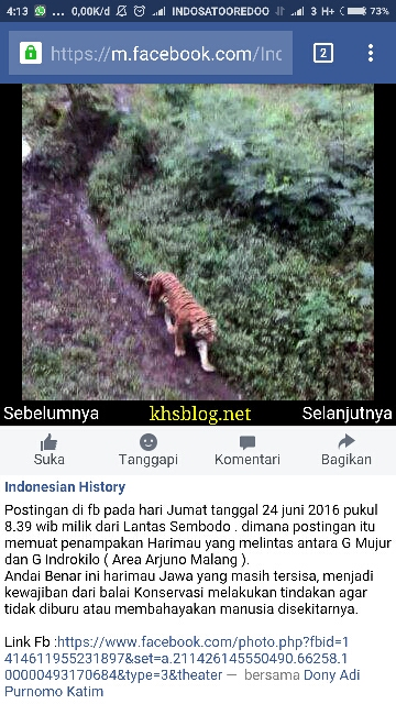 penampakan diduga Harimau Jawa di Gunung Arjuno 2016