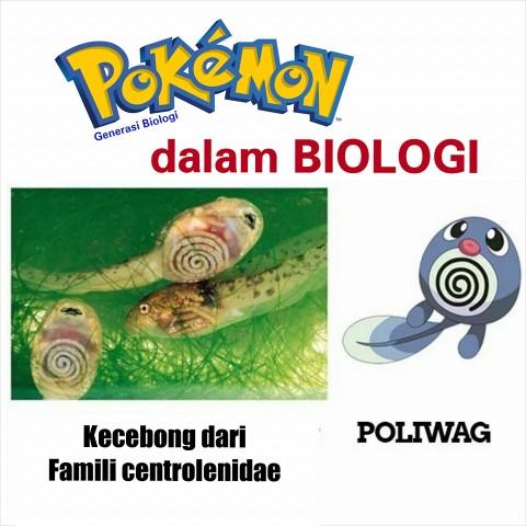 karakter pokemon dalam ilmu biologi atau kehidupan nyata (1)