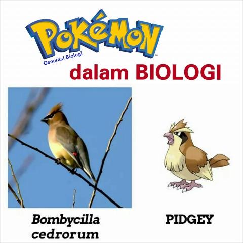 karakter pokemon dalam ilmu biologi atau kehidupan nyata (3)