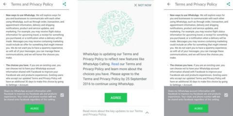 notifikasi dari WhatsApp terkait syarat dan ketentuan berlaku tahun 2016