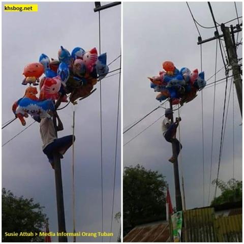 penjual balon mengambil balonnya yang terbang di tuban tahun 2016