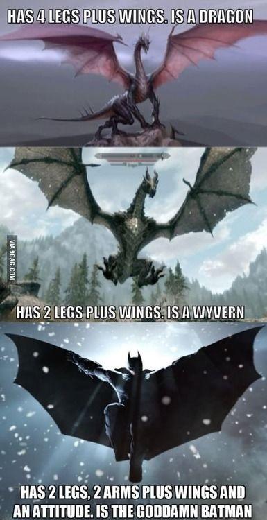 beda-dragon-dan-wyvern-dalam-gambar