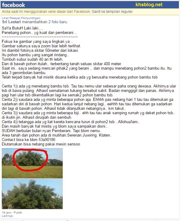 pohon-bambu-angker-di-desa-mutihan-serenan-juwiring-klaten-tahun-2017
