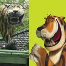 kumpulan meme macan cisewu tahun 2017 (7)