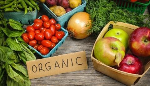 Manfaat Mengkonsumsi Sayuran Organik Untuk Kesehatan