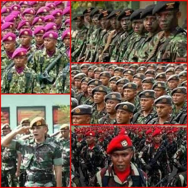 Mengenal warna dan makna baret TNI brosis